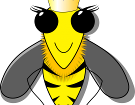 queen-bee-162026.png